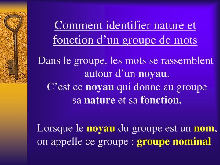 Comment identifier nature et fonction d'un groupe de mots