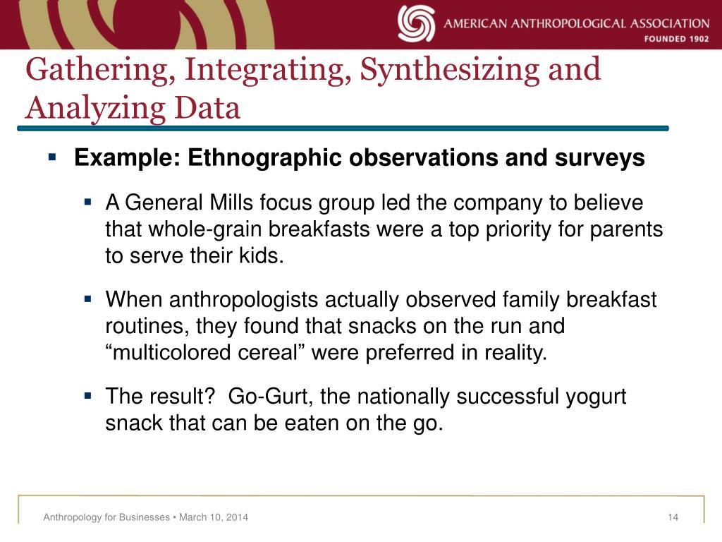 Gathering, Integrating, Synthesizing and Analyzing Data