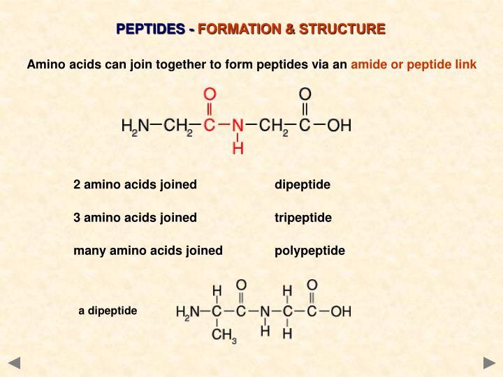 PEPTIDES -