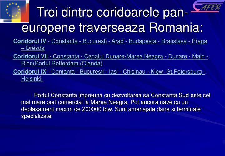Trei dintre coridoarele pan-europene traverseaza Romania: