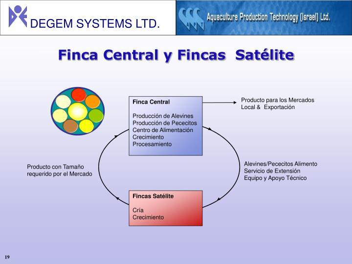 Finca Central y Fincas  Satélite
