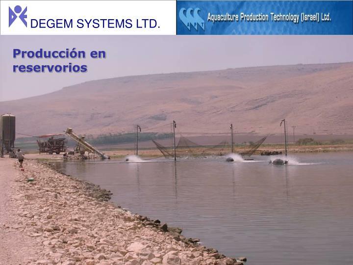 Producción en reservorios