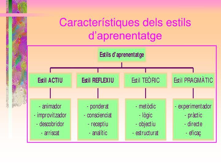 Característiques dels estils d'aprenentatge