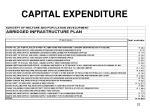 capital expenditure1