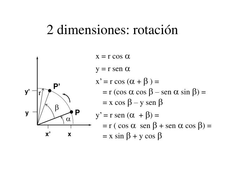 2 dimensiones: rotación