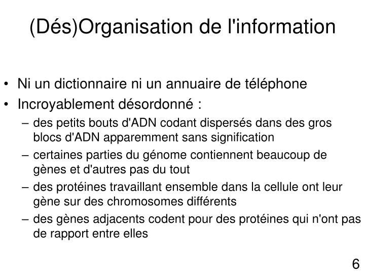 (Dés)Organisation de l'information