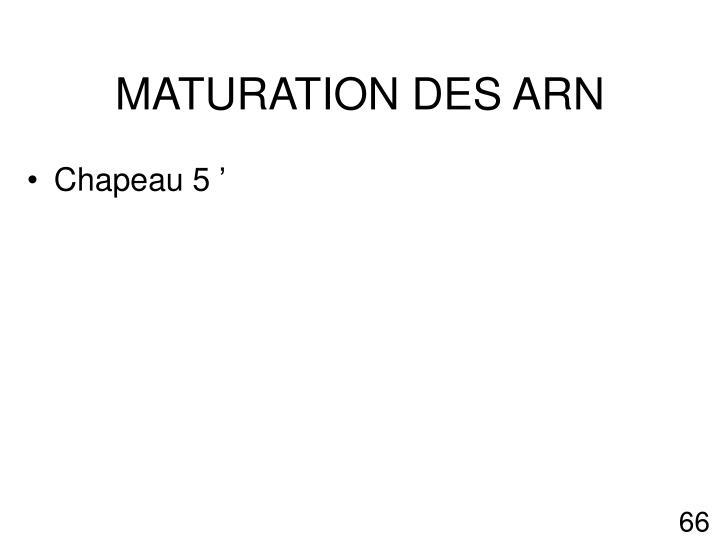 MATURATION DES ARN