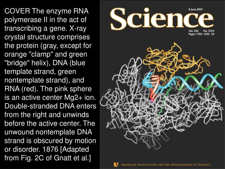 Science,8 juin 2001,cover