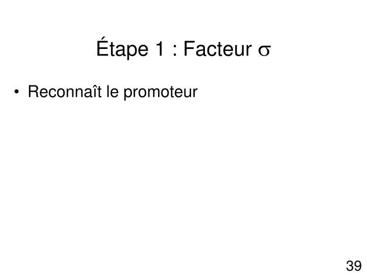 Étape 1 : Facteur