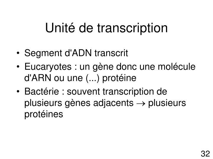 Unité de transcription