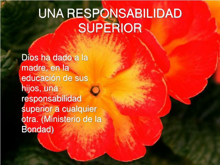 UNA RESPONSABILIDAD SUPERIOR