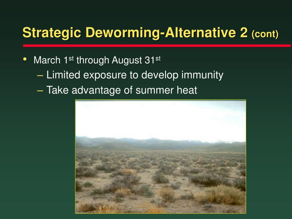 Strategic Deworming-Alternative 2