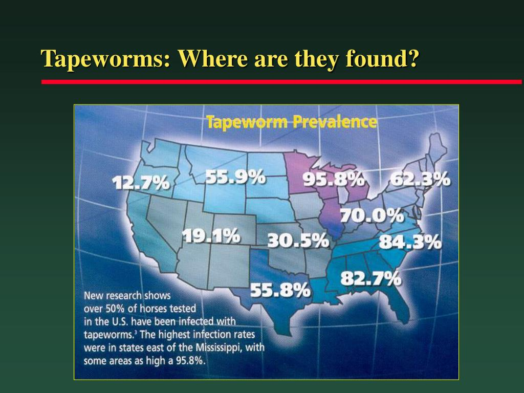 Tapeworms: Where are they found?