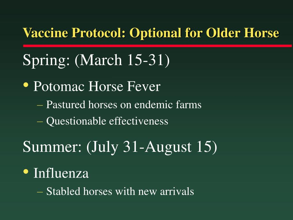 Vaccine Protocol: Optional for Older Horse