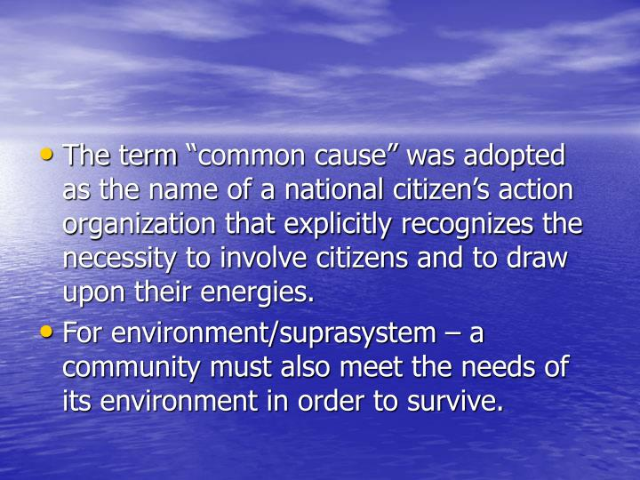 "The term ""common cause"" was adopted as the name of a national citizen's action organization that explicitly recognizes the necessity to involve citizens and to draw upon their energies."