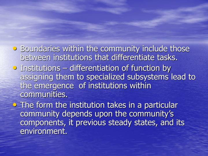 Boundaries within the community include those between institutions that differentiate tasks.