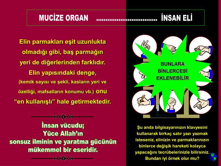 MUCİZE ORGAN