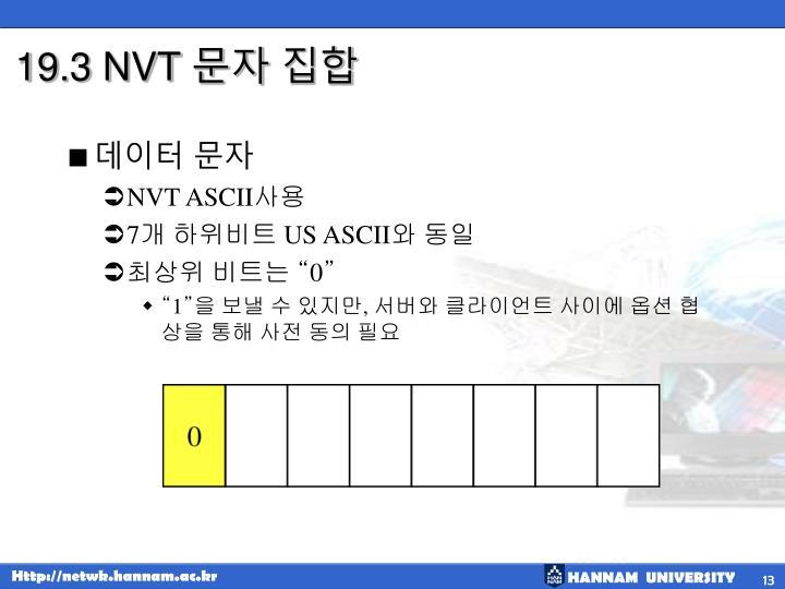 19.3 NVT