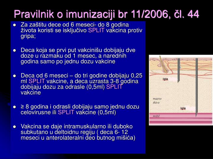 Pravilnik o imunizaciji br 11/2006, čl. 44