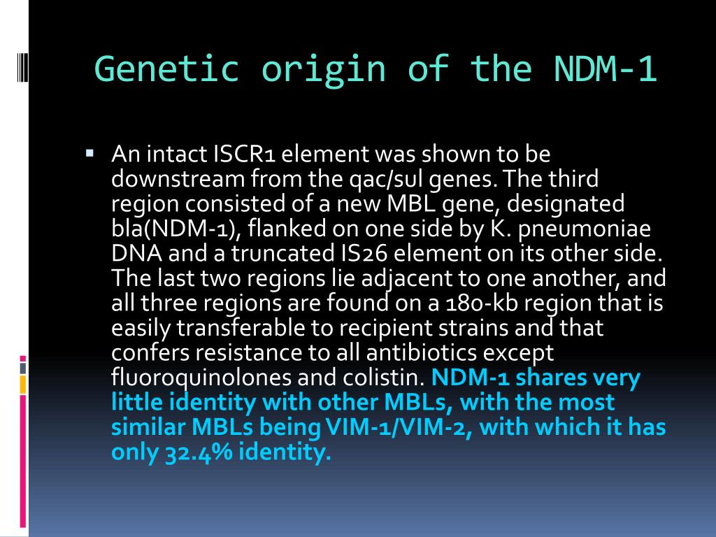 Genetic origin of the NDM-1