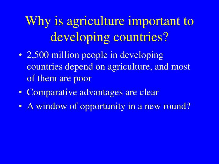Why is agriculture important to developing countries?
