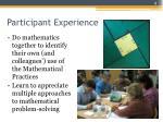 participant experience