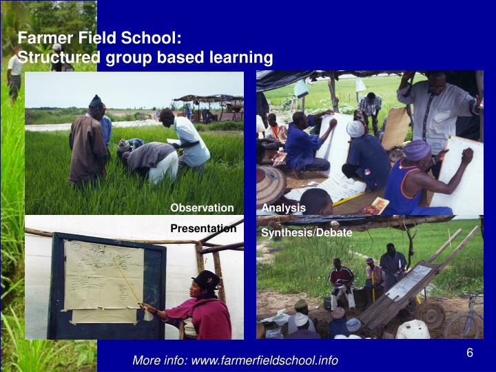 Farmer Field School: