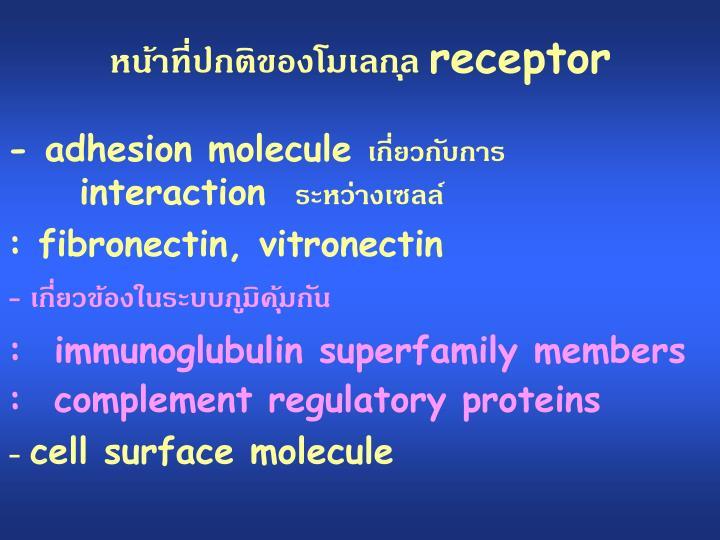 หน้าที่ปกติของโมเลกุล