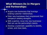what winners do in mergers and partnerships