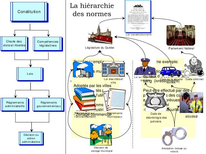 La hiérarchie
