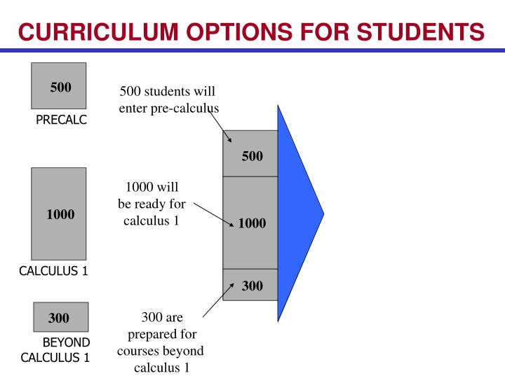CURRICULUM OPTIONS FOR STUDENTS