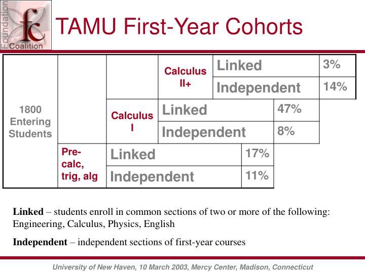 TAMU First-Year Cohorts