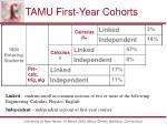 tamu first year cohorts
