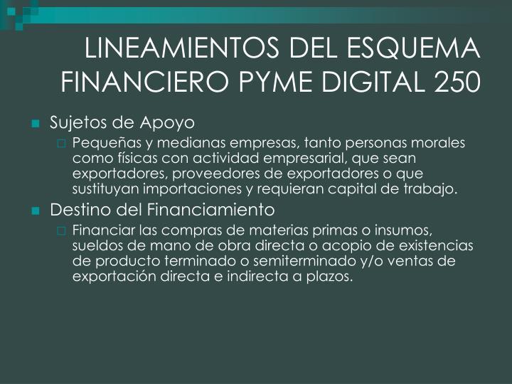 LINEAMIENTOS DEL ESQUEMA FINANCIERO PYME DIGITAL 250