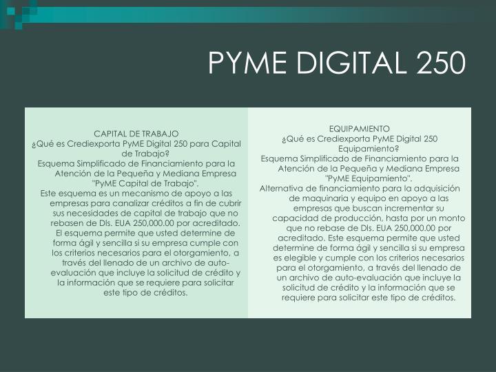 PYME DIGITAL 250