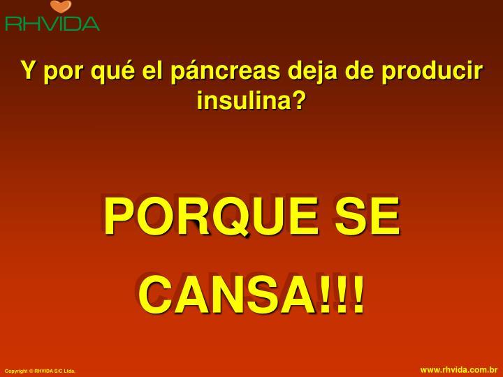 Y por qué el páncreas deja de producir insulina?
