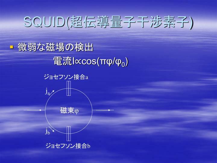 SQUID(