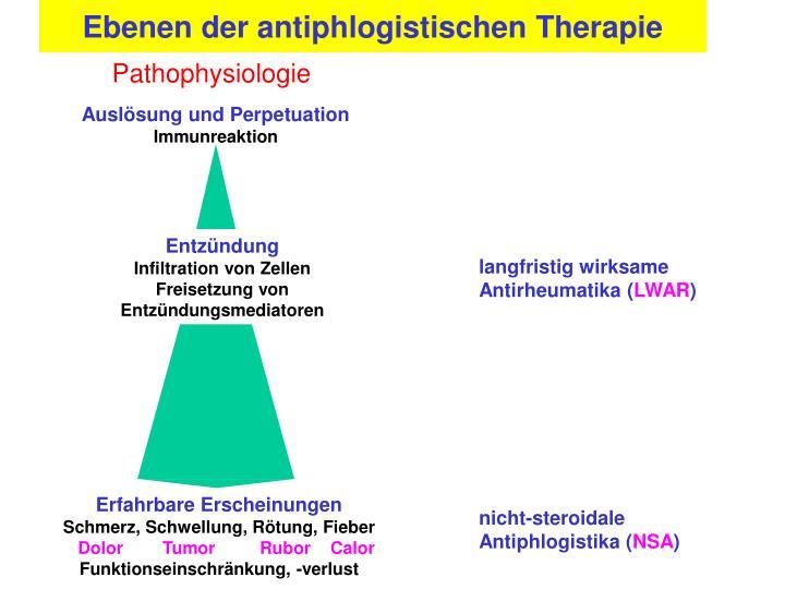 Ebenen der antiphlogistischen Therapie