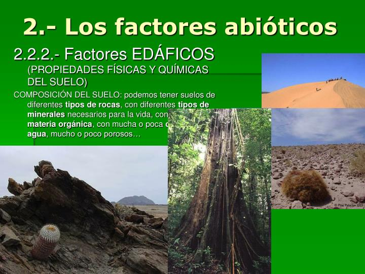2.- Los factores abióticos