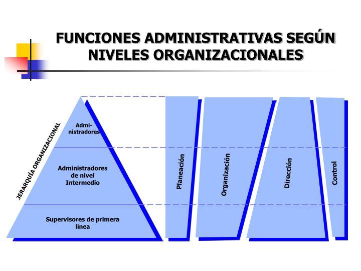 FUNCIONES ADMINISTRATIVAS SEGÚN NIVELES ORGANIZACIONALES