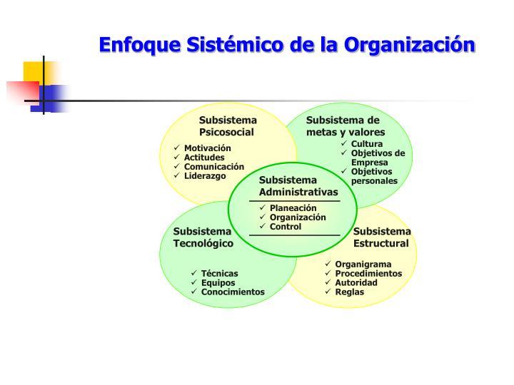 Enfoque Sistémico de la Organización