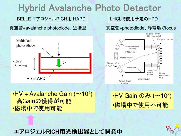 Hybrid Avalanche Photo Detector