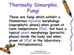 thermally dimorphic fungi