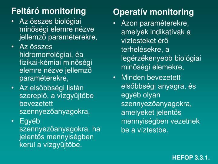 Feltáró monitoring