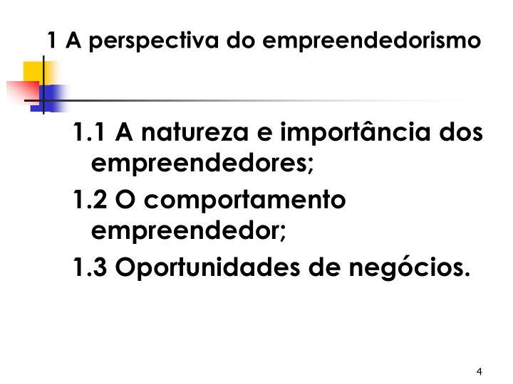 1 A perspectiva do empreendedorismo