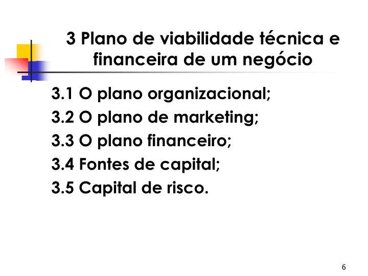 3 Plano de viabilidade técnica e financeira de um negócio