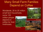 many small farm families depend on coffee