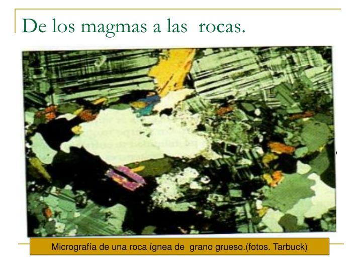 De los magmas a las  rocas.