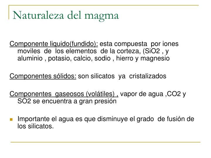 Naturaleza del magma