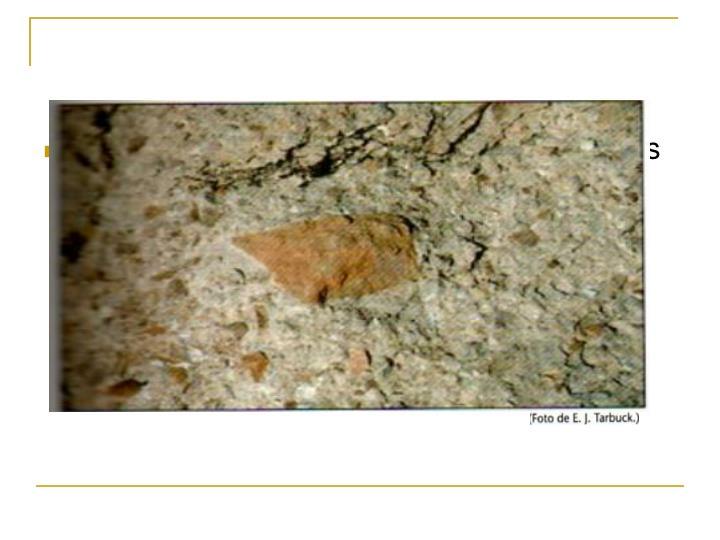 Textura  piroclasica: se forman cuando unos  fragmentos o cenizas son expulsados  cuando hace erupción un volcán